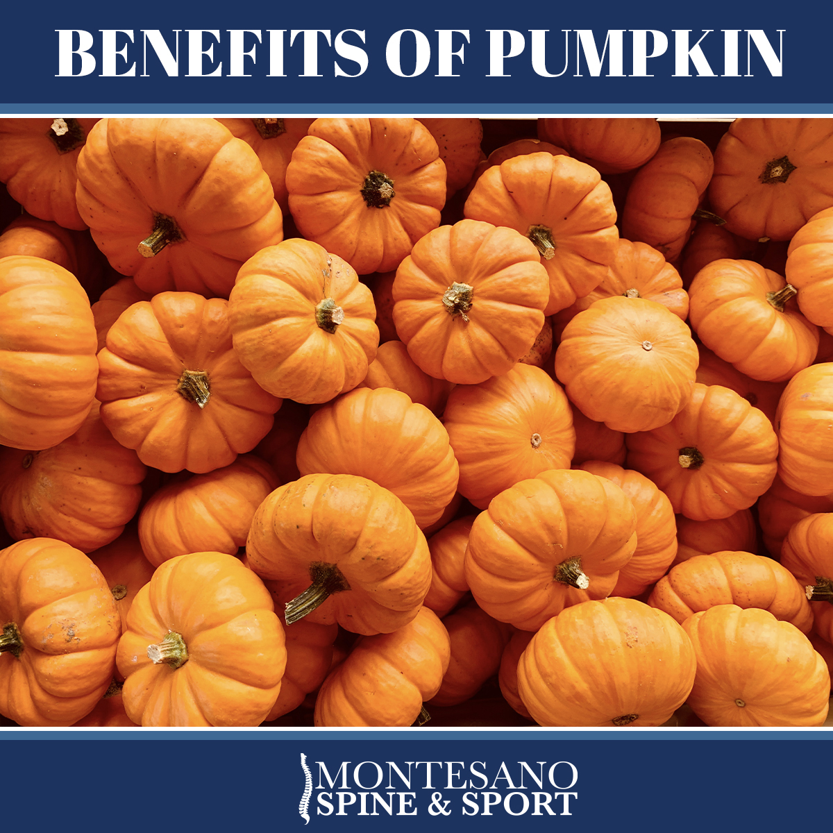 You are currently viewing Benefits of Pumpkin
